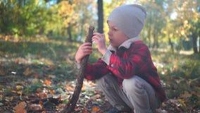 Il ragazzino sta giocando con un ramo di albero che si siede sulla terra con le foglie gialle nel parco di autunno video d archivio