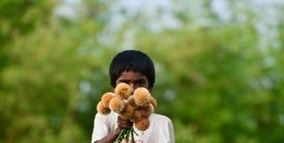Il ragazzino sta vendendo i fiori sulla fotografia unica isolata via Immagini Stock