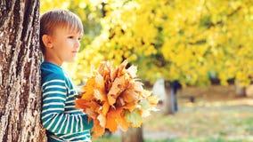 Il ragazzino sveglio gode di del tempo di autunno Bambino felice che gioca con le foglie di autunno al giorno soleggiato Infanzia fotografia stock