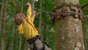 Il ragazzino in un cavo di sicurezza guida uno zipline in cime d'albero in un parco di avventura della foresta Scala sull'alta tr video d archivio