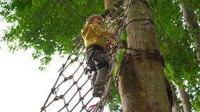 Il ragazzino in un cavo di sicurezza scala su un itinerario in un parco di avventura della foresta Scala sull'alta traccia della  video d archivio