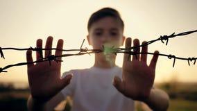 Il ragazzo è al tramonto dietro filo spinato Mani che tengono il cavo Concetto di immigrazione Siluetta di un bambino dietro la a video d archivio