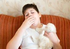 Il ragazzo è allergico al gatto Fotografia Stock Libera da Diritti