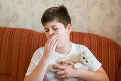 Il ragazzo è allergico al gatto Immagini Stock