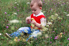 Il ragazzo alimenta la lama dell'anatroccolo di erba Immagini Stock Libere da Diritti