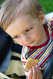Il ragazzo ambulante mangia i biscotti Immagine Stock