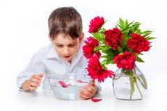 Il ragazzo in camicia bianca con le peonie ed il vaso di vetro innaffiano Immagine Stock