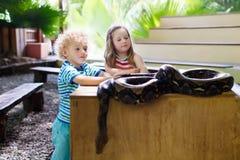 Il ragazzo e la ragazza tengono ed alimentano il serpente del pitone allo zoo Immagini Stock Libere da Diritti