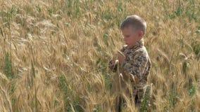 Il ragazzo funziona su un campo di grano stock footage