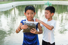 Il ragazzo gemellato tailandese prepara per il pesce dell'alimentazione Fotografie Stock Libere da Diritti
