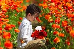Il ragazzo gode dei fiori in una serra del fiore immagini stock