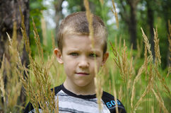 Il ragazzo nel parco Immagine Stock