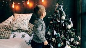Il ragazzo si agghinda l'albero di Natale stock footage