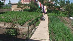 Il ragazzo si siede su un percorso in un orto domestico video d archivio