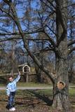 Il ragazzo sta vicino ad un alimentatore dell'uccello sotto l'albero. fotografia stock