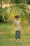 Il ragazzo sull'erba verde che tiene un ramo della palma Immagini Stock Libere da Diritti