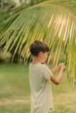 Il ragazzo sull'erba verde che tiene un ramo della palma Immagini Stock