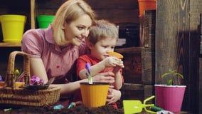 Il ragazzo sveglio del bambino aiuta sua madre a preoccuparsi per le piante Madre ed suo figlio impegnati nel giardinaggio a casa archivi video