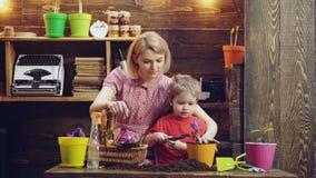 Il ragazzo sveglio del bambino aiuta sua madre a preoccuparsi per le piante Madre ed suo figlio impegnati nel giardinaggio nel co stock footage