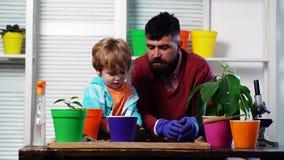 Il ragazzo sveglio del bambino aiuta suo padre a preoccuparsi per le piante Padre ed suo figlio impegnati nel giardinaggio nel co video d archivio