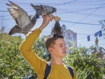 Il ragazzo teenager alimenta i piccioni sulla via della città immagine stock