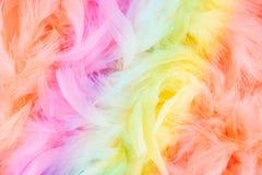 Il Rainbow mette le piume alla priorità bassa Fotografie Stock