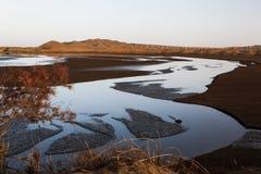 Il ramo del fiume nel deserto Fotografie Stock