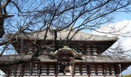 Il ramo dell'albero asciutto e della chiesa buddista ha fatto dal legno del tek il più grande del mondo Fotografia Stock