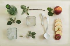 Il ramo della mela, i fiori e la mela tagliata su un fondo bianco Vista da sopra Fotografie Stock Libere da Diritti