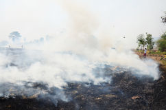 Il ramo e la foglia di uso della gente tailandese estinguono il fumo e le fiamme Fotografia Stock