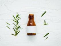 Il ramo fresco dei rosmarini con l'olio essenziale della bottiglia ha installato sul whi Fotografie Stock Libere da Diritti