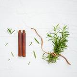 Il ramo fresco dei rosmarini con l'olio essenziale della bottiglia ha installato sul whi Immagini Stock