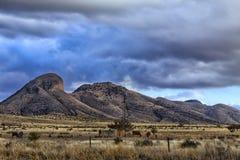 Il ranch Immagini Stock