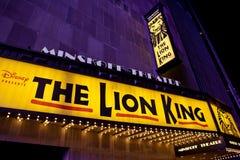 Il re del leone Fotografia Stock Libera da Diritti