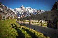 Il recinto, le alpi ed il cielo blu in Austria Fotografia Stock