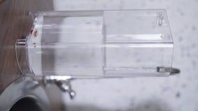 Il recipiente di plastica rettangolare della macchina del caffè è riempito di acqua in cucina archivi video
