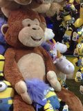 Il Regno Unito, Inghilterra, Nottingham, oca giusta, scimmia immagine stock