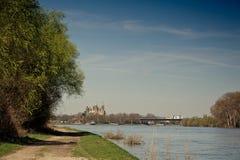 Il Reno e cattedrale a Speyer Fotografia Stock Libera da Diritti