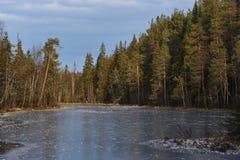 Il respiro dell'inverno immagine stock libera da diritti