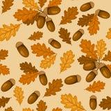 Il reticolo senza giunte con la quercia di autunno va e ghiande Fotografia Stock