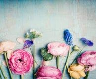 Il retro pastello dei fiori adorabili ha tonificato sul fondo d'annata del turchese Immagini Stock Libere da Diritti