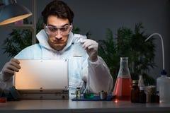Il ricercatore legale che lavora nel laboratorio che cerca prova Immagine Stock