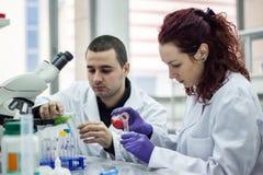Il ricercatore o lo scienziato o lo studente di laurea versa il rosso ed il verde Immagine Stock Libera da Diritti