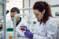 Il ricercatore o lo scienziato o lo studente di laurea versa il rosso ed il verde Fotografia Stock