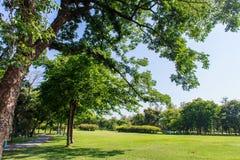 Il rilassamento del parco Immagine Stock Libera da Diritti