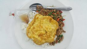il riso ha completato con carne di maiale in padella e basilico con la salsa di pesce e dell'omelette Immagini Stock Libere da Diritti
