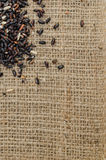 Il riso nero sulla borsa del sacco per il testo del fondo Fotografie Stock