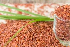Il riso rosso o il riso di Bruwn ha accatastato su un pavimento di legno ed in un piccolo gl fotografie stock libere da diritti