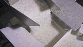 Il riso si sbriciola nelle parti uguali in una macchina automatica moderna video d archivio