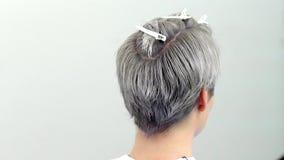Il risultato dei tagli di capelli e della parte posteriore di rappresentazione della pittura dei capelli della testa, movimento l video d archivio